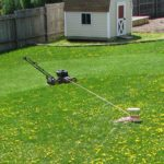 Automatic Lawn Mower Viral Video